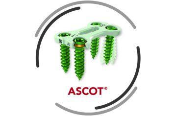 ASCOT – Anterior Cervical Stabilisation